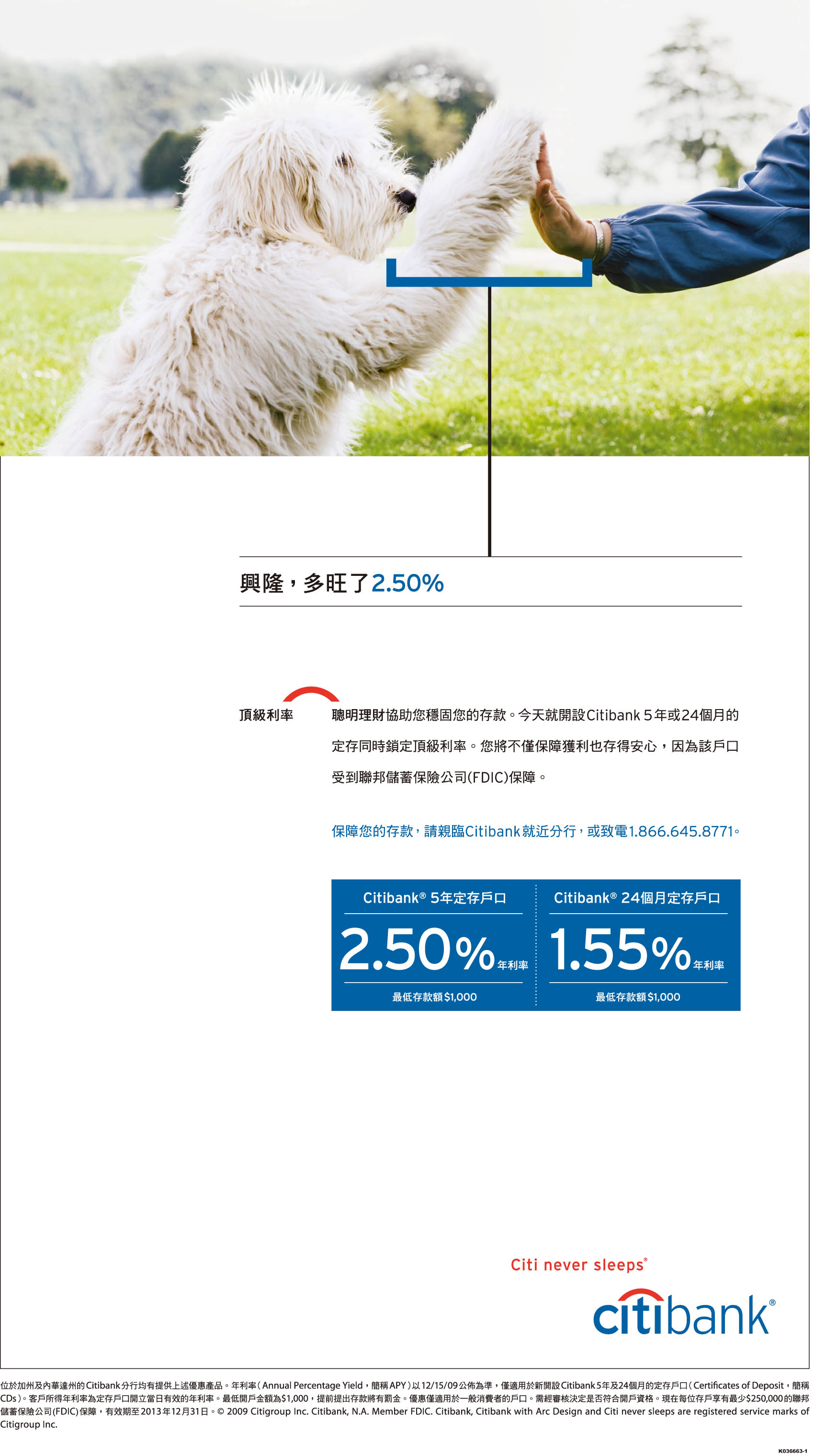 Sample Display Advertisements Of Financial Institutions On Chinese